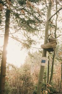 Boty v lese