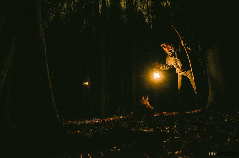 Noc v lese