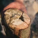 Výroba ohně finská svíce