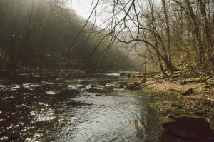 Ráno na řece Oslava