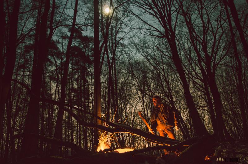 Forest Trenz v lese