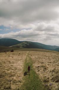 Nízké Tatry Kečka