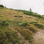 Přechod hřebenovky Nízkých Tater