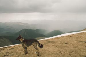 Velká Chochuľa, Nízké Tatry