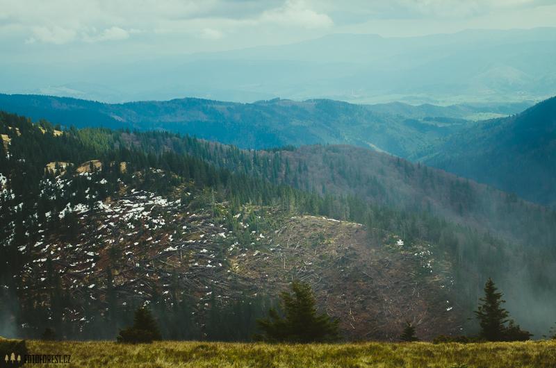 Lesní polom Nízké Tatry