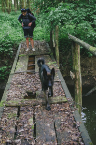 U rybníka Vrkoč