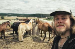 Práce u koní