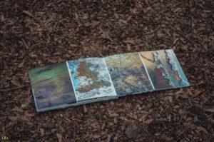 Foto kniha fotografa Foresta Trenze