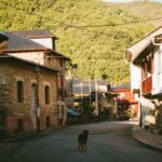 Poutníci na cestě do Santiaga