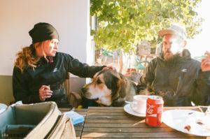 Psi ve Španělsku